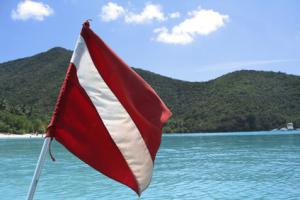 Scuba Flag